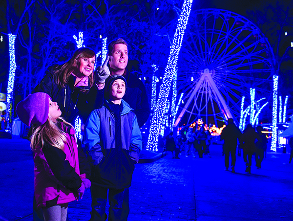 family of four look at lights display
